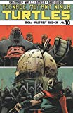 img - for Teenage Mutant Ninja Turtles Volume 10: New Mutant Order (Teenage Mutant Ninja Turtles Ongoing Tp) book / textbook / text book