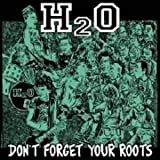 Don't Forget Your Roots [LP]