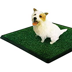 PetZoom Pet Park Indoor Pet Potty, 25.5&quot; x 20&quot; x 2&quot;