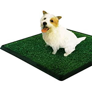 "PetZoom Pet Park Indoor Pet Potty, 25"" x 20"" x 0.5"""