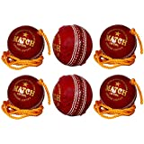 PSE Unisex Leather Practice Cricket Ball- Pack Of 6 Red
