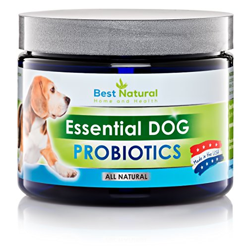 Natural Diarrhea Relief For Dogs
