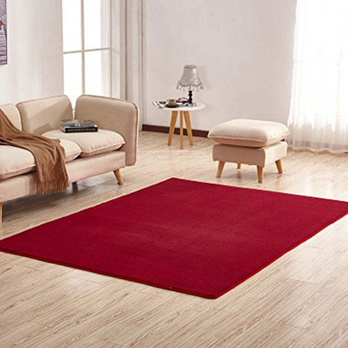 jack-mall-thickening-coral-cashmere-tapis-salon-cafe-mat-table-de-chevet-chambre-tapis-tissu-couleur