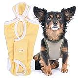 犬猫の服 full of vigor 獣医師と共同開発 犬用 術後服エリザベスウエア 小型犬用 男の子 雄用 カラー 8 イエロー サイズ NL フルオブビガー