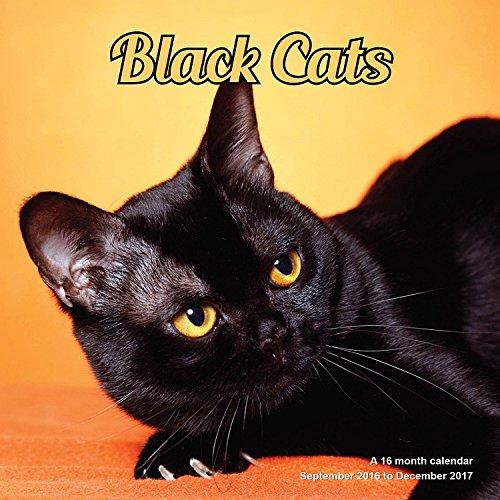 black-cats-calendario-2017