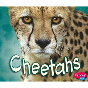 Cheetahs (African Animals) (Pebble Plus: African Animals)