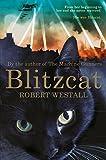 img - for Blitzcat book / textbook / text book