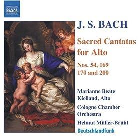 Vergnugte Ruh, beliebte Seelenlust, BWV 170: Aria: Wie jammern mich doch die verkehrten Herzen (Alto)