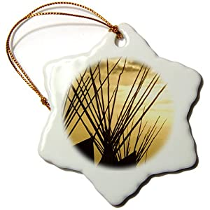 3dRose orn_91629_1 Teepee, Native American, Browning Montana US27 CHA0800 Chuck Haney Snowflake Porcelain Ornament, 3-Inch