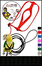 The AVIATOR Bird Harness and Leash: Large Black Made in America