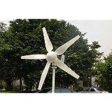 Windmax HY400 500 Watt Max 12-Volt 5-Blade Residential Wind Generator Kit