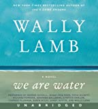 img - for We Are Water CD: A Novel book / textbook / text book