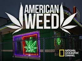 American Weed Season 1