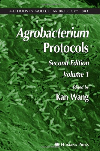 Agrobacterium Protocols: Volume I (Methods In Molecular Biology)