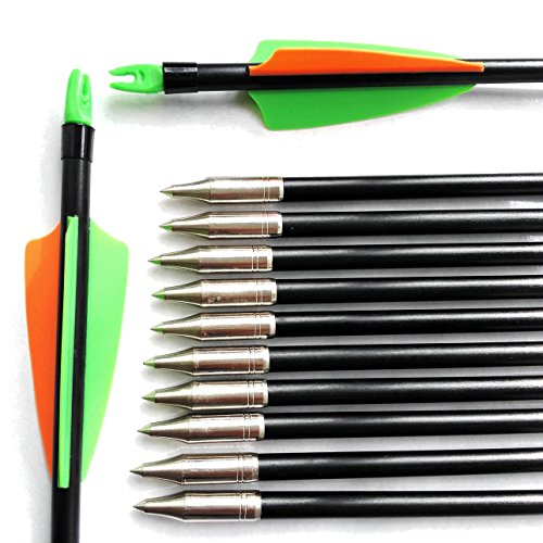 1 Dozen Prunus Fixed Tips Fiberglass Arrows 31 inch with Adjustable Nocks and Green Orange Vanes as Targeting Practice Hunting Arrows for Recurve and Compound Bows (Target Arrows For Recurve Bow compare prices)