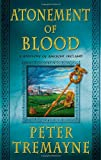 Atonement of Blood: A Mystery of Ancient Ireland (Mysteries of Ancient Ireland)