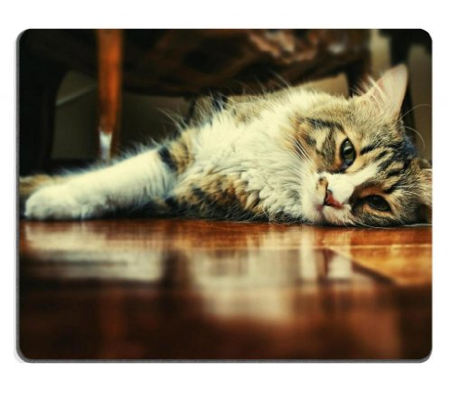 Floor Wood Indoors Cats Animals Mouse Pads Customized Made To Order Support Ready 9 7/8 Inch (250Mm) X 7 7/8 Inch (200Mm) X 1/16 Inch (2Mm) High Quality Eco Friendly Cloth With Neoprene Rubber Msd Mouse Pad Desktop Mousepad Laptop Mousepads Comfortable Co front-571002