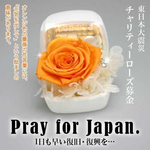 【東日本大震災】チャリティーローズ募金/オレンジ色のバラ(プリザーブドフラワー)で被災者の方々の力に…