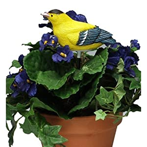Singing Goldfinch - Plant Pal Soil Moisture Meter (Finch Sings When Plant Is Thirsty!)