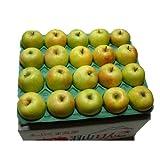 (訳あり) 菅野アップル農園 王林(おうりん) 香り高く 優しい甘さ 青りんご 福島県羽山産 ご家庭用 小ぶりな Mサイズ 5kg ランキングお取り寄せ