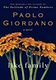 img - for Like Family: A Novel book / textbook / text book