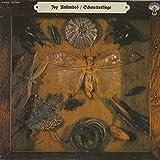 Joy Unlimited - Schmetterlinge - Garden Of Delights - LP 021