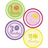 Lollipop Labels Baby Girl Flowers Monthly Onesie Sticker With Gingham Pattern Includes 1-12 Month Stickers