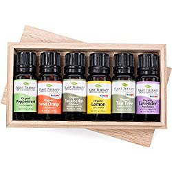 Top 6 Organic Essential Oils Set. Includes 100% Pure, Undiluted, Therapeutic Grade Essential Oils of Eucalyptus, Lavender, Orange, Peppermint, Lemon and Tea Tree. 10ml Each
