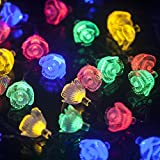 M&T Tech Solar Powered 30 LED String Lights Rose Flower For Outdoor Garden Patio Lawn Christmas Party Fence Window(Multi color)