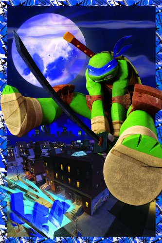 Teenage Mutant Ninja Turtles Leonardo Framed 3D Hanging Wall Art, 11-Inch by 17-Inch