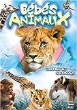 echange, troc Bébés animaux : jeunes et sauvages - coffret 2 DVD