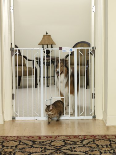 Indoor Dog Gates Making The Right Choice Just Got Easier