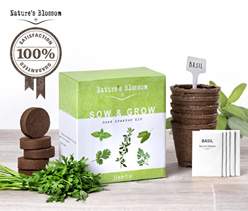 Grow 5 Herbs from Seed with Nature's Blossom Plant Kit - All You Need to Have your own Organic Herb Garden at Home. Unique Gift For Women and Men. Great For Indoor and Outdoor Gardening. (Mint Starter Kit compare prices)