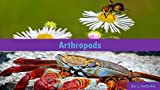 img - for Arthropods book / textbook / text book