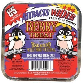 Cheap Cands Products CS12527  Berry Treat Suet for Year Round Bird Feeding (B0006YY3E4)