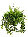 Artificial Large Foliage Greenery Winter Plant Hanging Basket Trailing with Ivy, Fern & Yucca Plants - Suitable for Outdoor Use - All Year Round - Deluxe Version