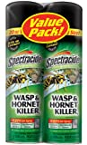 Spectracide Wasp and Hornet Killer, Twin Pack, 2 to 20-Ounce