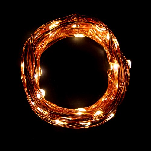 Innoo Tech**32.8Ft/10M Warm White 102 LED Copper Wired String Light Fairy Decorative Light for Xmas, Birthday Party, Weddings and other Celebrations