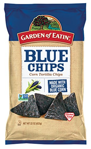 Garden of Eatin' Blue Corn Tortilla Chips, 22 Ounce (Pack of 10) (Blue Corn Tortillas Non Gmo compare prices)