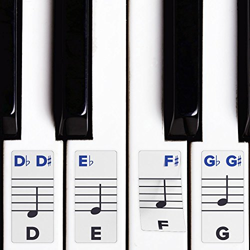 Piano Stickers for Keys - Removable w/ Double Layer Coating for 49 / 61 / 76 / 88 Keyboards (Piano By Number For Kids compare prices)