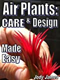 Air Plants: Care and Design Made Easy