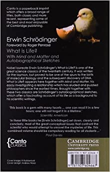 schrodinger mind and matter pdf