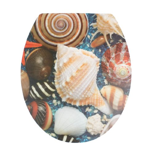 Amico Decorative Sea Shell Pattern Removable Sticker Decal Toilet Lid Seat Cover