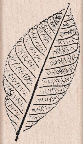 "Hero Arts Mounted Rubber Stamps 2.25""X3.25""-Hand Pressed Leaf - 1"