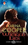 Wicked Lies: A Dark Mission Novella