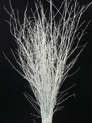 decorative-coloured-birch-twigs-and-branches-white-25-stems