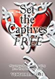 img - for Set the Captives Free: A journey of emotional healing from the pains of the past book / textbook / text book