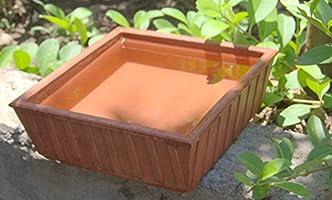Nature Forever Earthen Pot (Teracotta Bird Bath) - 9 inch x 9 inch