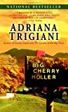 Big Cherry Holler (0449007499) by Adriana Trigiani