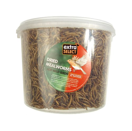 Extra-Select-Mealworms-3-L-Tub